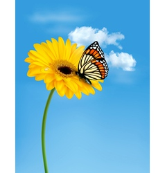 Nature summer yellow flower with butterfly vector image