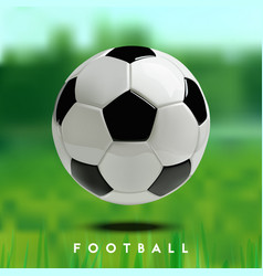 soccer or football ball on green background vector image