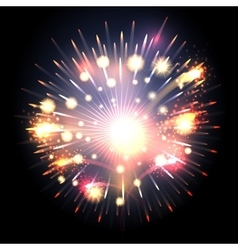 Bursting firework vector image vector image