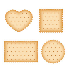 cartoon biscuit eating pastry breakfast cookies vector image
