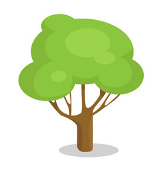 green tree with trunk icon vector image vector image