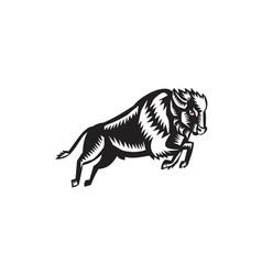 American Bison Buffalo Jumping Woodcut vector image vector image