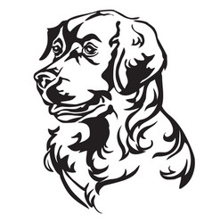 decorative portrait of dog golden retriever vector image