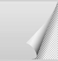 Paper blank page curled corner with shadow vector