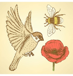 Sketch poppy bee and sparrow in vintage style vector