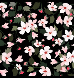 Sweet white and pink flower on black background vector