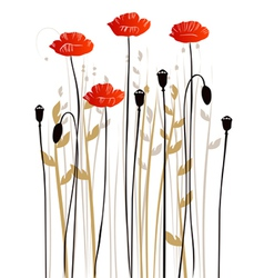 Floral background poppies vector image