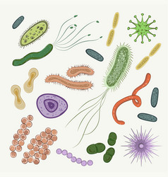 bacteria virus germs icon set vector image