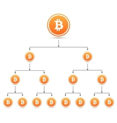 Bitcoin organization tree chart vector image