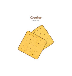 cracker hand draw sketch vector image