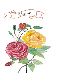 Invitation rose greeting card vector