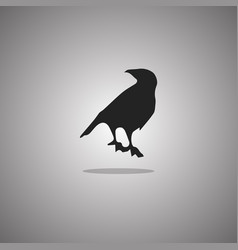 raven silhouette isolated vector image