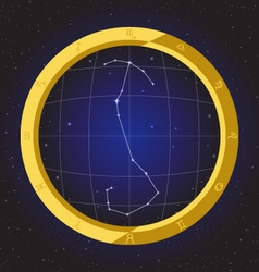 scorpio star horoscope zodiac in fish eye vector image