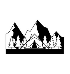 tent camping trees and mountains vector image