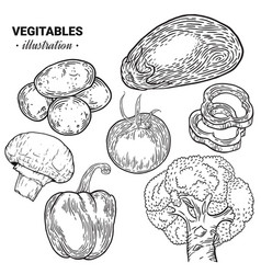 Vegetables hand drawn sketch vector