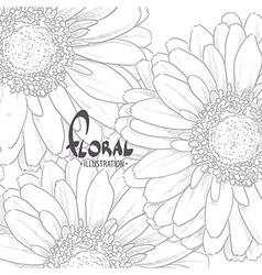 Gerbera drawn in pencil vector image vector image
