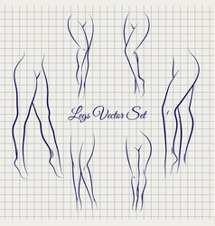 sexual woman legs sketch collection vector image vector image