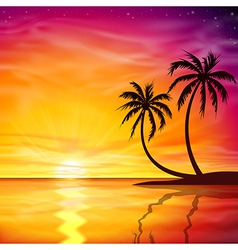 Sunset Sunrise with Palm Trees vector image vector image