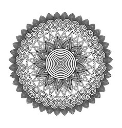 round floral mandala decorative ethnic element vector image