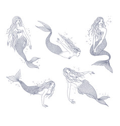 mermaid in various postures hand drawn contour vector image vector image