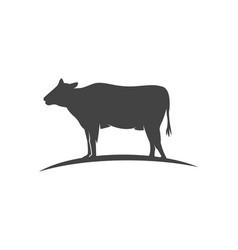Cow logo template icon vector