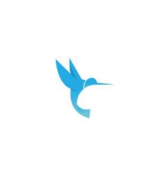 creative blue hummingbird logo vector image