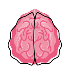 Human brain isolated vector