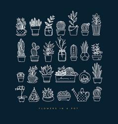 icon plants in pots dark blue vector image