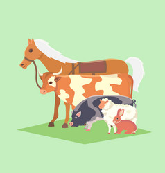 set of popular colorful farm animals pet vector image