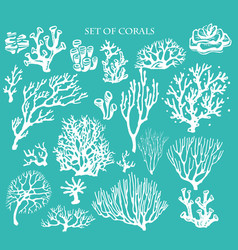 Set underwater coral reef elements vector