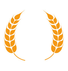 Wheat spikelets forming wreath barley spikes vector