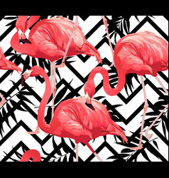 flamingo bird and zigzag seamless pattern vector image