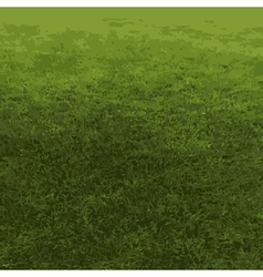 auto traced background nature grass vector image