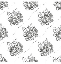 bouquet of chrysanthemum flowers vector image