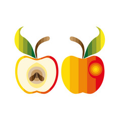 Colorful apple vector