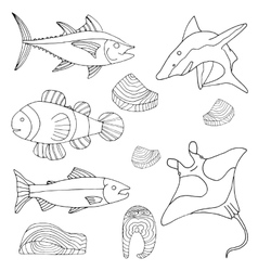 Hand-drawn sea and river fish Cooked pieces Set vector image