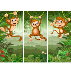 Set of three monkeys in the forest vector