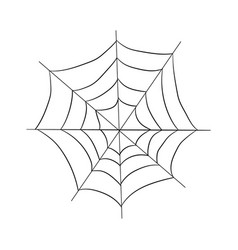 contour pattern of a web drawing by hand vector image vector image
