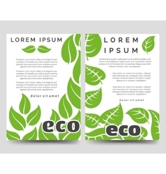 Eco brochure template with green leaves vector image