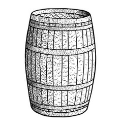 barrel drawing engraving ink line vector image