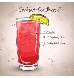 Cocktail Sea Breeze vector