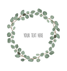 Floral wreath with green eucalyptus leaves frame vector