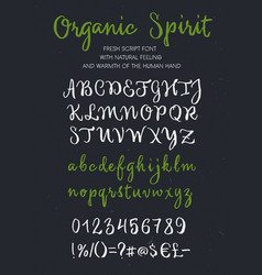 Organic spirit brush script alphabet vector