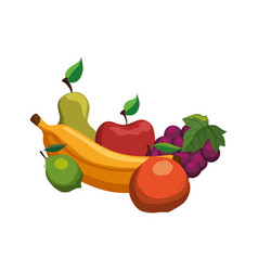 delicious set of fruits vector image vector image