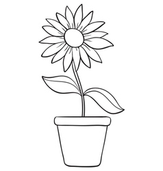 A flower and a pot sketch vector