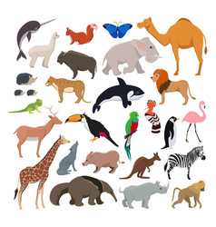 big set with wild cute animals isolate vector image
