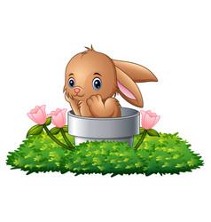cartoon rabbit in the hole vector image