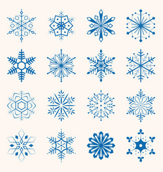 collection of blue snowflakes sixteen snowflakes vector image