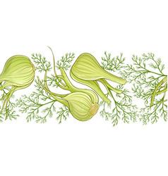 fennel pattern vector image