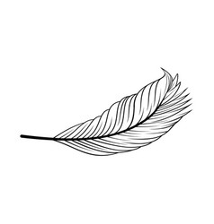 Gentleness peaceful or feather logo icon vector
